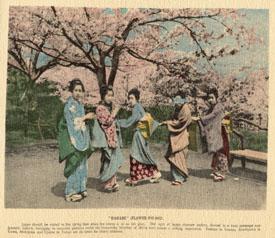 ijl-1918b_5_hanami